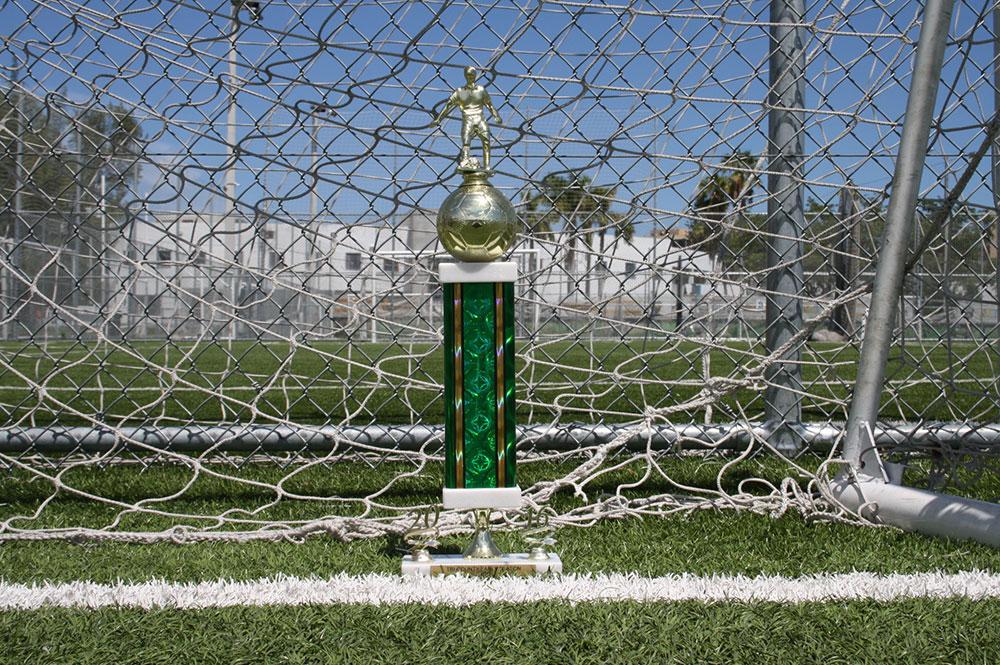 2016 10U Tri-County Early Season Finalists